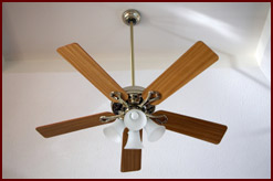 Conservation - Ceiling Fan